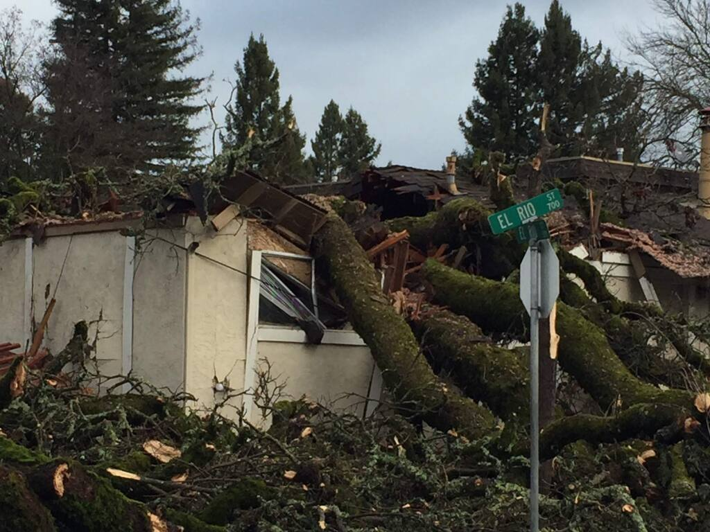 A tree crashed into a Ukiah home, killing a woman that lived there on Saturday, Jan. 21, 2017. (COURTESY OF UKIAH FIRE DEPARTMENT)