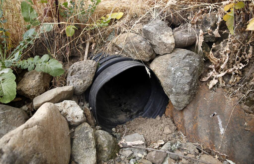 A culvert that will be replaced through a state grant to reduce erosion at the MacLeod Family Vineyard in Kenwood, on Thursday, June 16, 2016. (BETH SCHLANKER/ The Press Democrat)