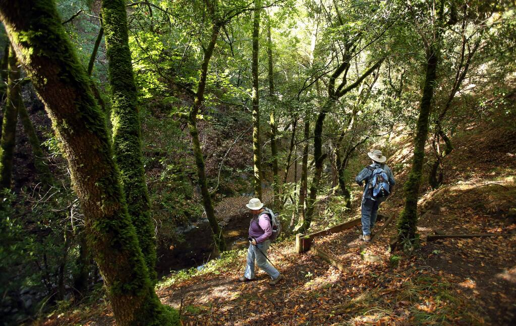 Janet and Bill Tonkin hike down to Santa Rosa Creek as they explore Hood Mountain Regional Park near Santa Rosa on Tuesday, Oct. 1, 2013. (Christopher Chung/ The Press Democrat)