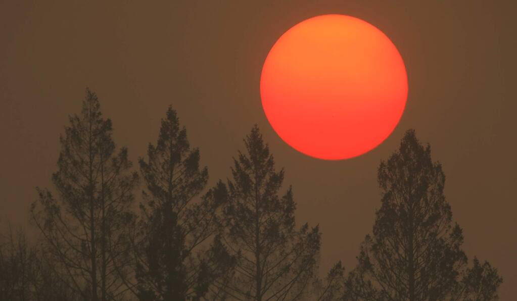 Smoke from the Camp fire in Butte County turns the sun orange as it sets on Novl. 9 behind trees that were burned during the Tubbs fire. (KENT PORTER / The Press Democrat)