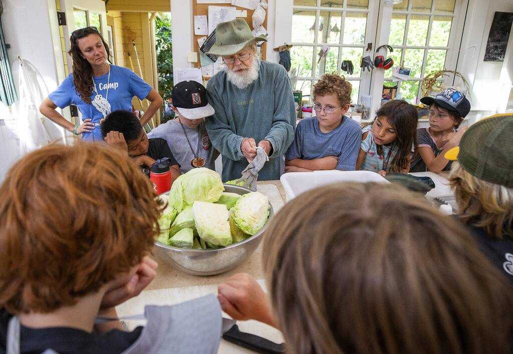 Lou Preston, center, teaches campers how to make sauerkraut during a class on fermentation at the LandPaths Owl camp at Preston Farm in the Dry Creek Valley. (photo by John Burgess/The Press Democrat)