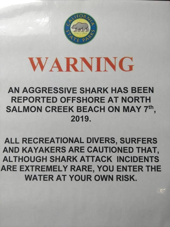State Park personnel have posted warning signs along a 2-mile stretch of coastline around North Salmon Creek Beach in the wake of an aggressive encounter involving a surfer and a great white shark on May 7.