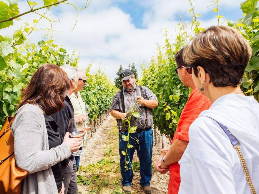 USA Today 10Best: Best Winery Tours 2017: No. 1: Emeritus Vineyards, Sebastopol (EMERITUS VINEYARDS)