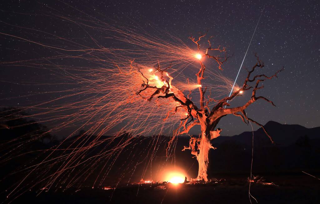A meteor streaks across the sky as gusty winds create an ember cast on a valley oak tree burned by the Kincade fire, early Wednesday morning in Knights Valley east of Healdsburg, Wednesday, Oct. 30, 2019. (Kent Porter / The Press Democrat) 2019