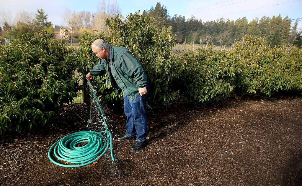 James Dentoni an environmental health specialist with Sonoma County Department of Health Services runs well water from a faucet on East Cotati Ave., before he takes a sample test for EColi in Rohnert Park, Thursday Dec. 31, 2015. Two wells in the area tested positive for the bacteria. (Kent Porter / Press Democrat) 2015