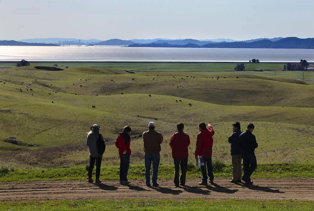 Sonoma Land Trust and National Oceanic and Atmospheric Administration officials give a tour of the Sears Point Ranch project to Japanese scientists on Wednesday. The 2,327 acre site extends from Infineon Raceway to the bay. Farmland near the bay---the green swath in the middle of the picture--will be flooded and restored as a tidal wetland.