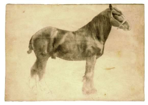 Edgar Degas study for 'Plough Horse,' ca. 1860-61, graphite drawing.