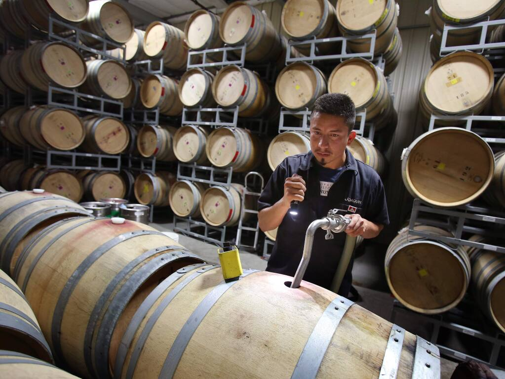 Joaquin Reyes fills up oak barrels with wine from the many full tanks at Punchdown Cellars in Santa Rosa on Wednesday, July 3, 2013. Many wineries are concerned about whether there be enough space in the tanks to crush all the grapes from this year's particularly big harvest. (Conner Jay/The Press Democrat)
