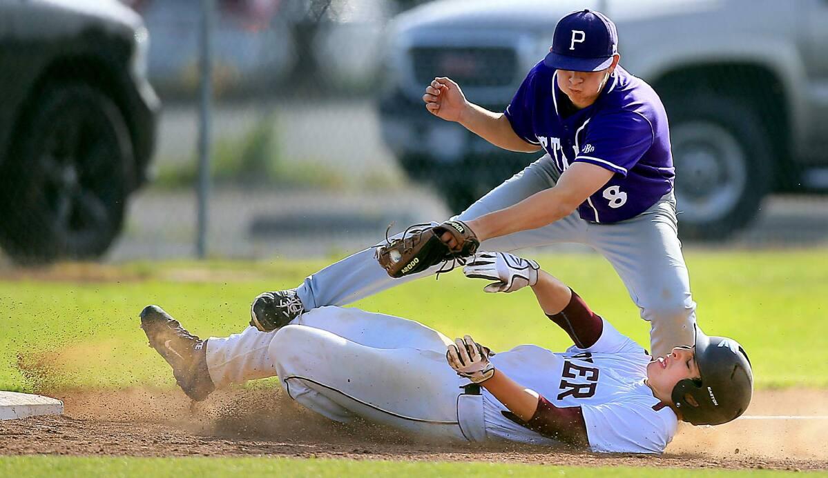 Petaluma Baseball cover image