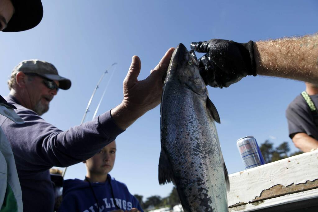Deckhand Michael Wood, right, hands a salmon off to a passenger after a day of sport fishing on the 'New Sea Angler' in Bodega Bay, on Monday, July 9, 2012. (BETH SCHLANKER/ The Press Democrat)