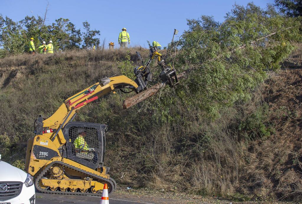 A PG&E crew removes trees and bushes in a 40 foot swatch under high-voltage transmission lines from the Fulton substation along River Rd. east of Olivet Rd. (photo by John Burgess/The Press Democrat)