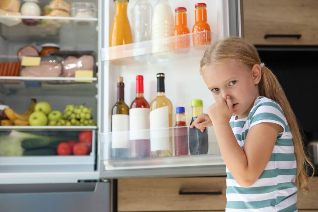 Such expressions reflect common assessments of local refrigerators, and private utilities, these days.
