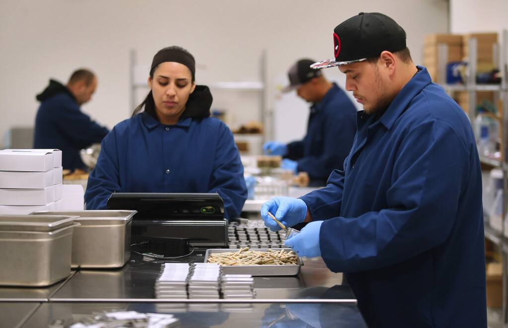 Carlos Monroy, right, and Adri Boracchia work on packaching Marley Natural brand whole flower pre-rolls at the Privateer Holdings cannabis processing facility, in Santa Rosa on Wednesday, September 13, 2017. (Christopher Chung/ The Press Democrat)