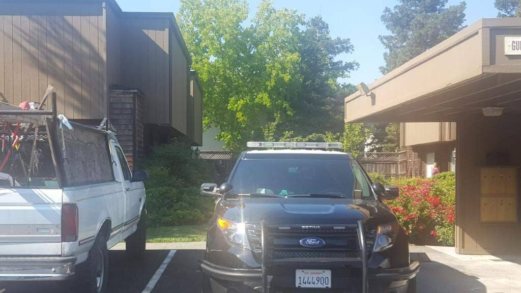 Santa Rosa police were investigating the slaying of a woman in her Russell Avenue apartment, pictured in the left corner, on Friday, Aug. 18, 2017. Her boyfriend has been arrested in her death. (ELOISA RUANO GONZALEZ/ PD)