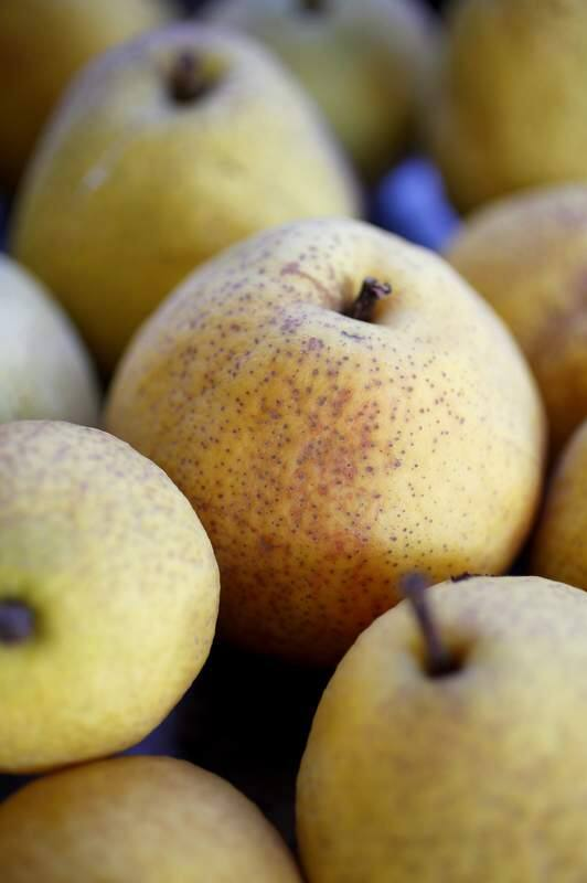 Freshly picked pears from a backyard in Healdsburg. (Beth Schlanker/ The Press Democrat)