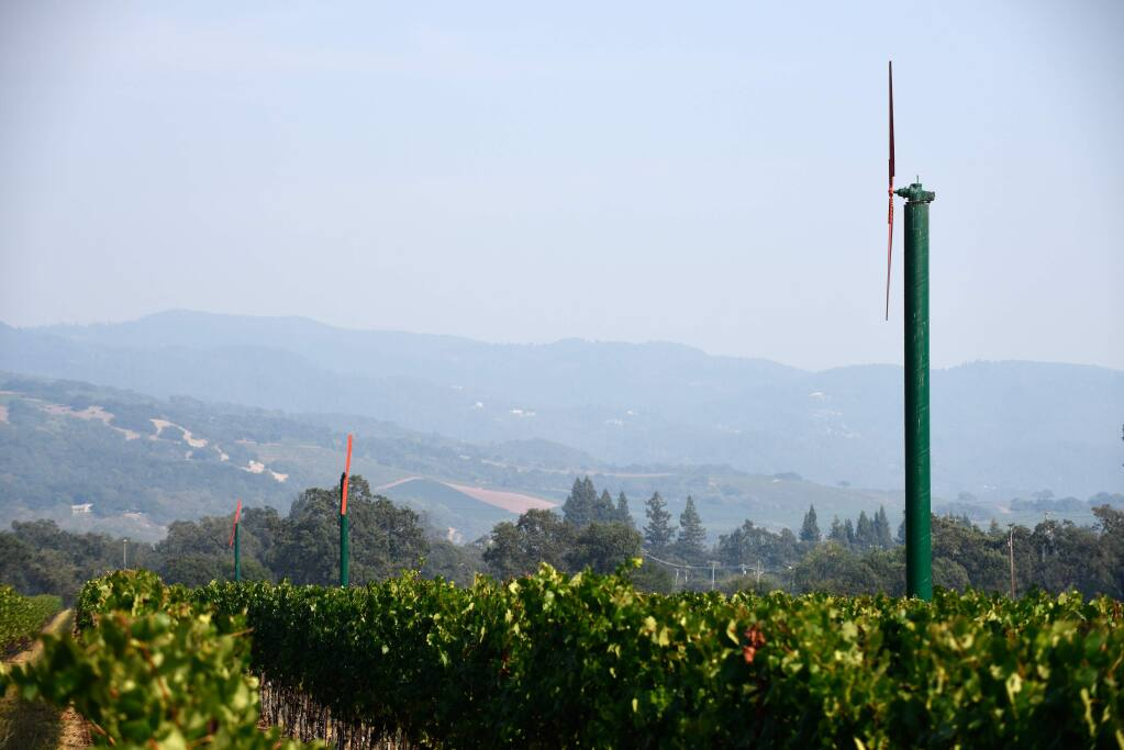 The Mayacamas Mountains, seen from St. Francis Winery's Wild Oak Estate vineyard, are obscured by haze above Santa Rosa on August 15, 2015. (Alvin Jornada / The Press Democrat)