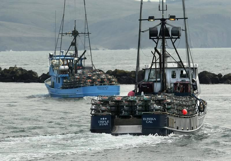 (PD file photo) Crab boats from the Spud Point Marina head out of Bodega Bay to set their pots on November 28, 2011.