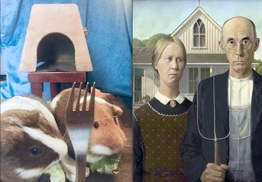 Adelina Heath, sophomore at Santa Rosa High, recreated Grant Wood's 'American Gothic' (1930), right, with her pet guinea pigs. (Adelina Heath)