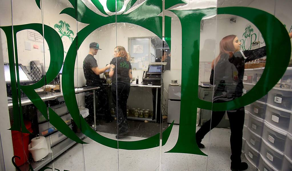 River City Phoenix employees fill orders for medical marijuana patients, Friday Nov. 18, 2016 in Sacramento. RCP is a union shop under the UFCW and pay above minimum wage. (Kent Porter / The Press Democrat) 2016