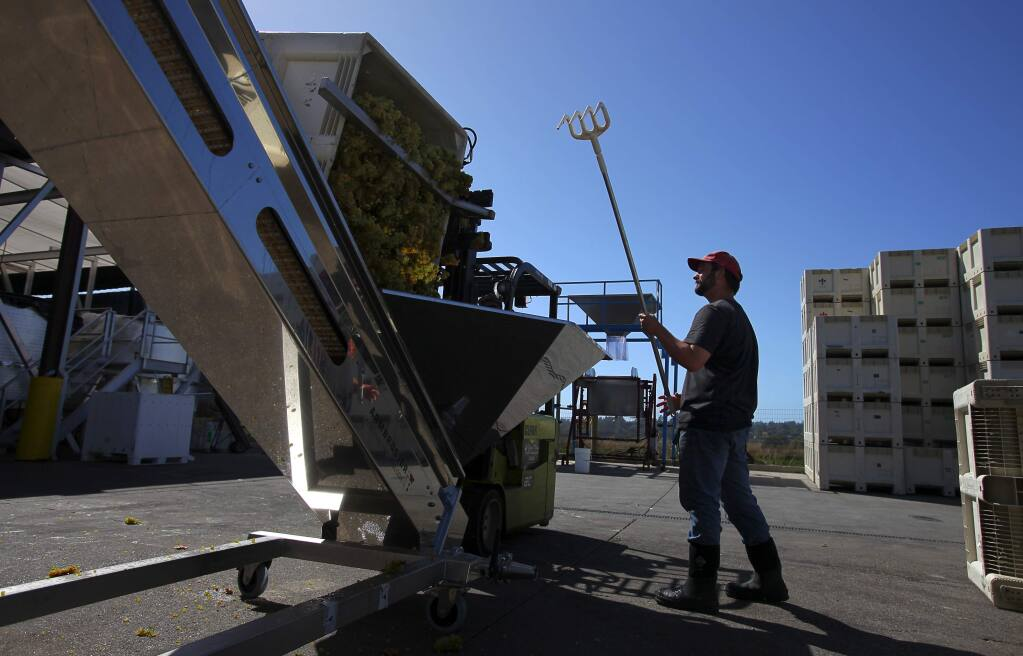 At a Balletto Vineyards and Winery vineyard near Santa Rosa, Wednesday Sept. 13, 2017, an air dryer is used to blow moisture from grapes in reaction to this weeks wet weather. (Kent Porter / The Press Democrat) 2017