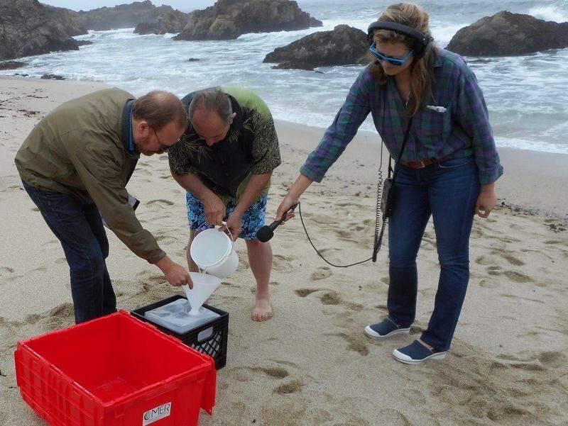 Marine chemist Ken Buesseler, left, and Dan Sythe of Sebastopol-based International Medcom collect a seawater sample in June at Bodega Head . KRCB radio reporter Danielle Venton is at right. (COURTESY PHOTO)