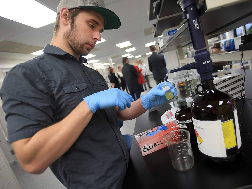 Analyst Kevin Nolan uses a methanol chloroform mixture to help extract cannabinoids from marijuana at CannaCraft in Santa Rosa on Wednesday, Dec. 14, 2016. (Kent Porter / The Press Democrat)