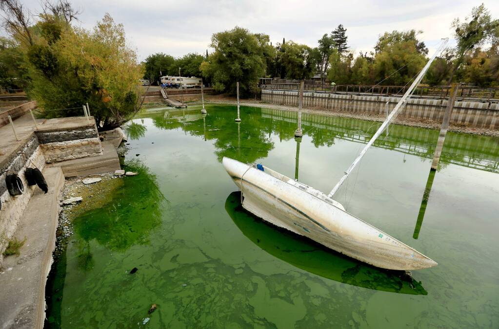 At Trombetta's in Clearlake, the low Clear Lake water level, a victim of the drought, causes a sailboat to list in the mud and brackish algae, Firday Aug. 29, 2014. Over the weekend, the Rumsey Gauge dropped to zero, a measurement used to determine the water level of the lake. (Kent Porter / Press Democrat)