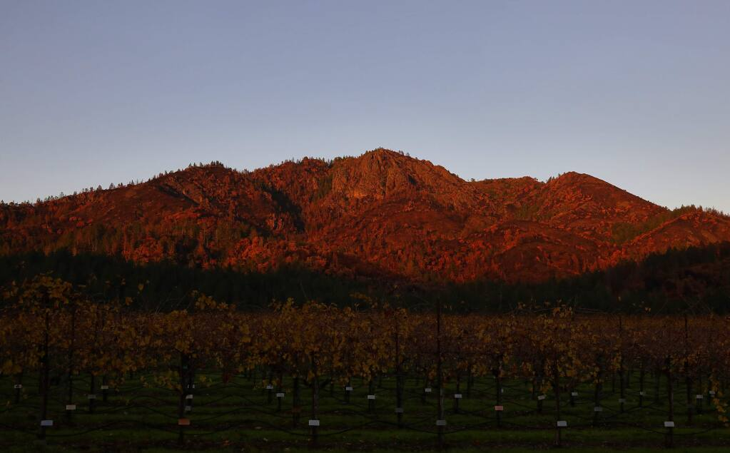 The setting sun shines on the burned regions of Hood Mountain Regional Park, above a vineyard at St. Francis Winery & Vineyards. (CHRISTOPHER CHUNG/ PD)