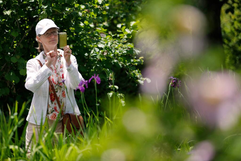 Sarah Pierpoint of Santa Rosa snaps a photo of some colorful flowers on a docent-led tour of Quarryhill Botanical Garden, which is a fundraiser for Santa Rosa Symphony's music education programs, in Glen Ellen, California, on Wednesday, May 22, 2019. (Alvin Jornada / The Press Democrat)