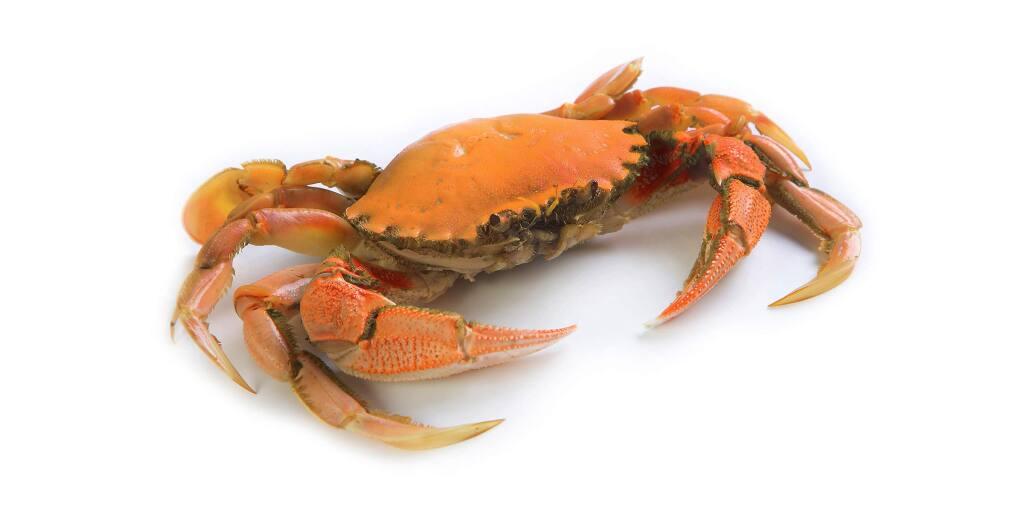 Dungeness crab season begins on Nov. 22, 2019.