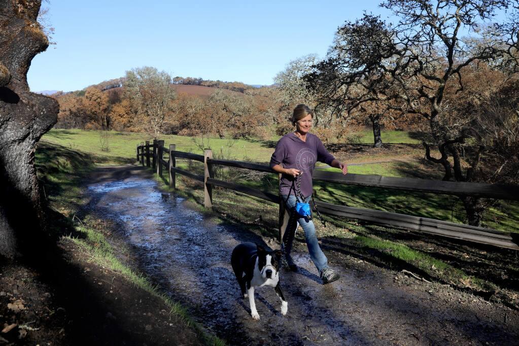 Jennifer Alvarez and her dog, Roxie, take a walk along a trail at Foothill Regional Park in Windsor on Monday, Dec. 30, 2019. (BETH SCHLANKER/The Press Democrat)