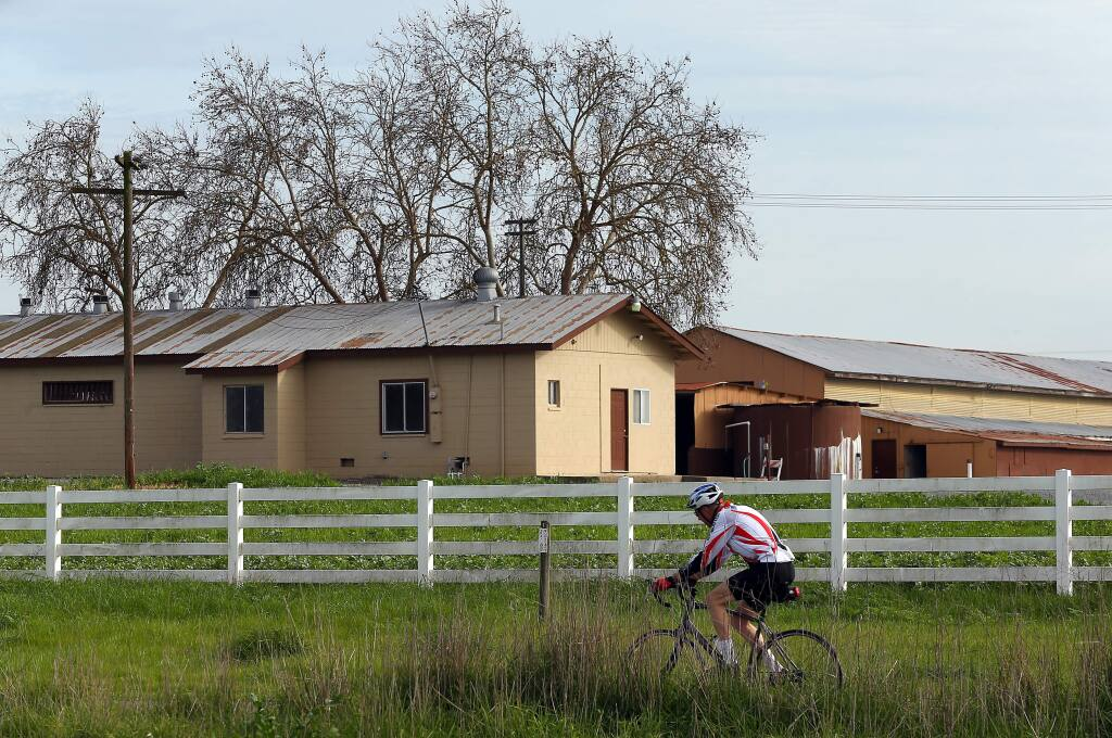 A bicyclist rides along the Joe Rodota Trail past a former dairy that a Napa County vintner is proposing a large winery and distillery, along Highway 12, east of Llano Road, on Monday, Feb. 2, 2015. (CHRISTOPHER CHUNG/ PD)