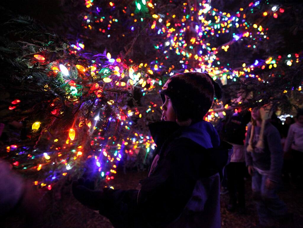 Logan Colorado, 5, is awed by the lights on the Christmas tree following the tree lighting ceremony at the Windsor Town Green on Thursday, Dec. 2, 2010. (Christopher Chung/ The Press Democrat)