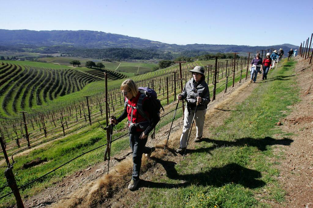 Christa Teitelbaum, Glen Ellen, left, and Elaine Dengler, Santa Rosa hike with a group of about 100 hikers through a terraced vineyard while on a guided hike on the Kunde Estate in Kenwood on Saturday morning Feb. 9, 2013. (PD FILE)