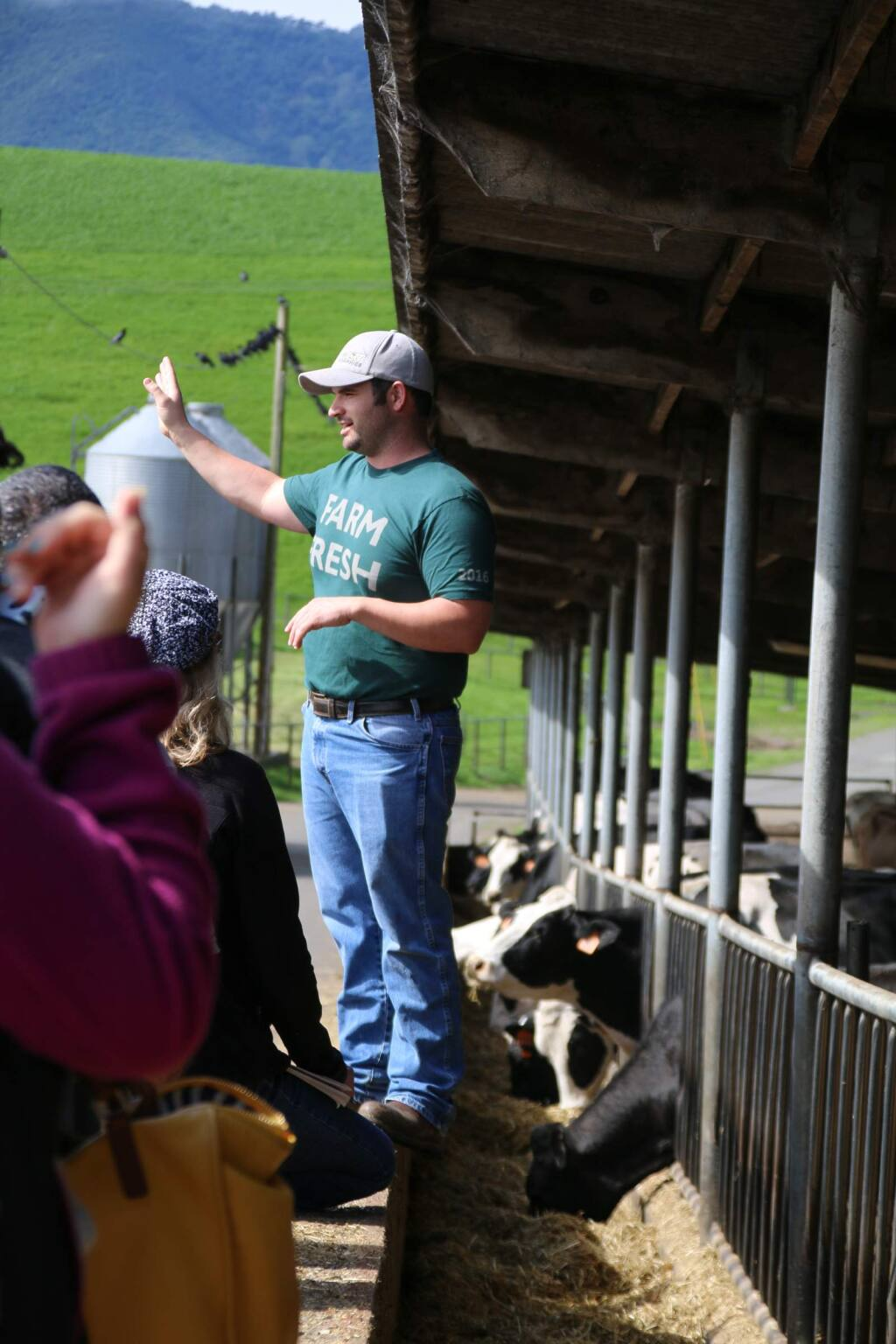 Brannon Areias guides guests at Point Reyes Farmstead Cheese Company/The Fork during a farm tour at the 10th Annual California's Artisan Cheese Festival Saturday, March 19, 2016. (Victoria Webb/For The Argus-Courier)