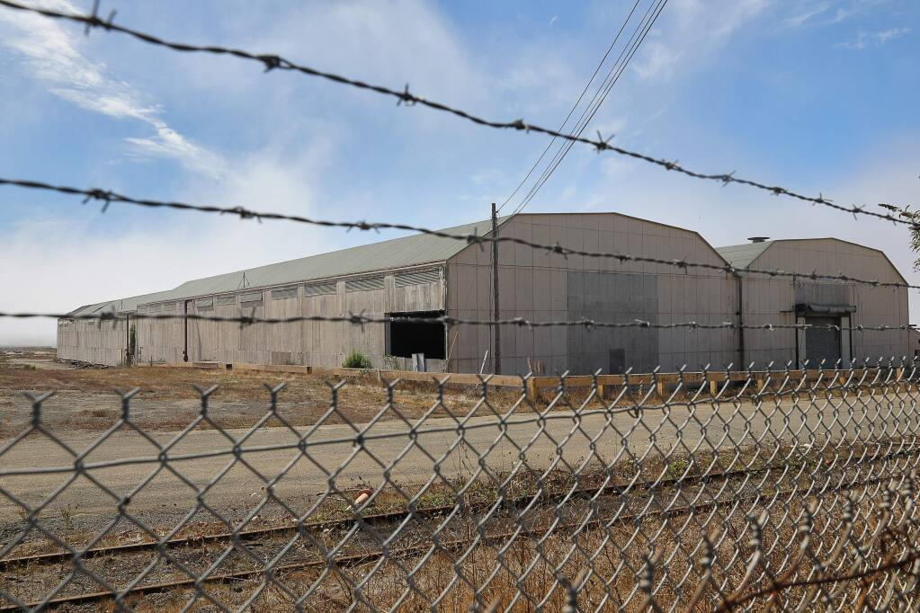 Two large drying sheds still remain on the site of the former Georgia-Pacific Mill in Fort Bragg on Friday, September 14, 2018. (Christopher Chung/ The Press Democrat)