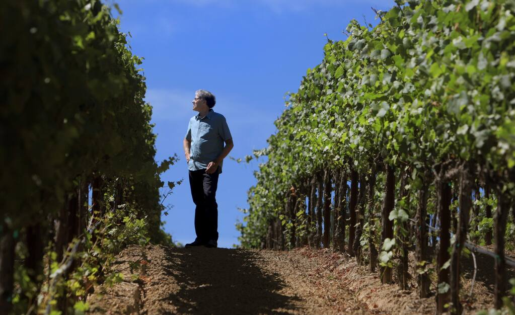 KENT PORTER / The Press DemocratPhillip Corallo-Titus, winemaker at Napa Valley's Chappellett in St. Helena, looks over a vineyard in the Russian River appellation in Graton that he sources for making wine.