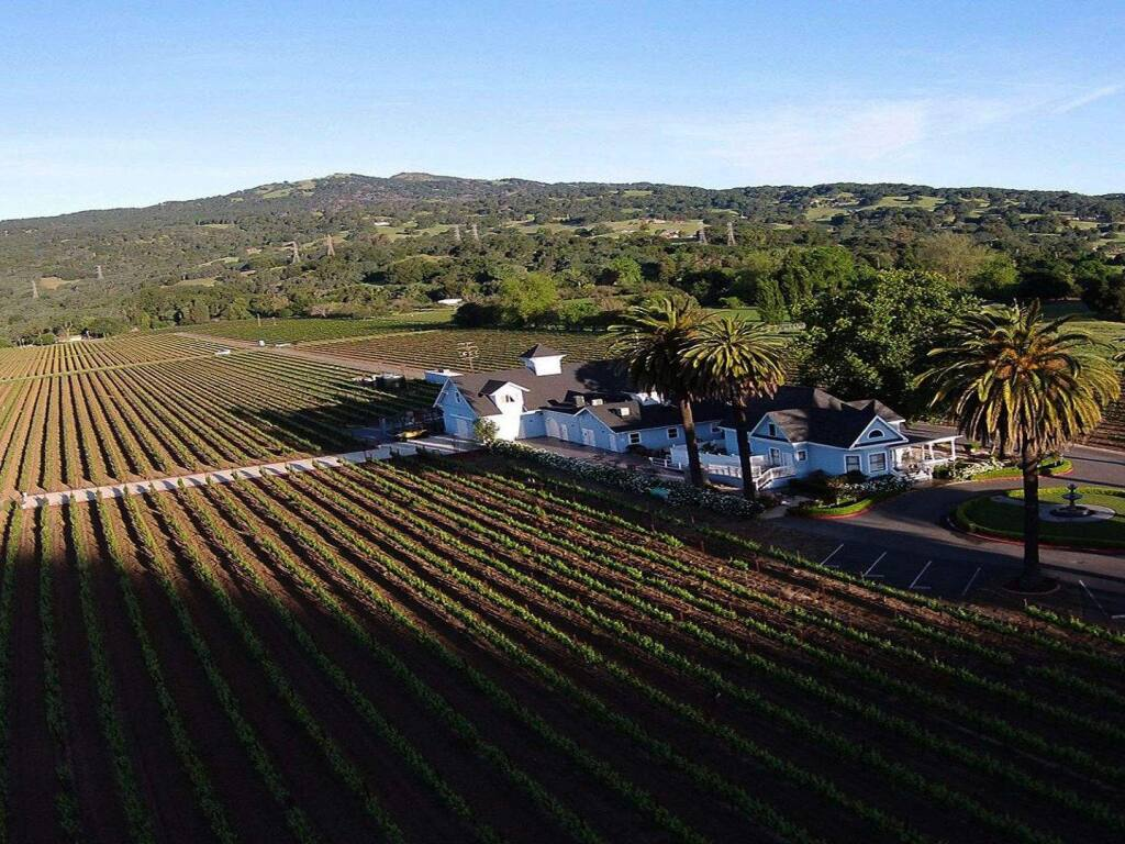 Blue Victorian Vineyards is in Solano County's Suisun Valley American Viticultural Area near Fairfield, Solano County. (COURTESY OF FAIRFIELD CONFERENCE & VISITORS BUREAU)
