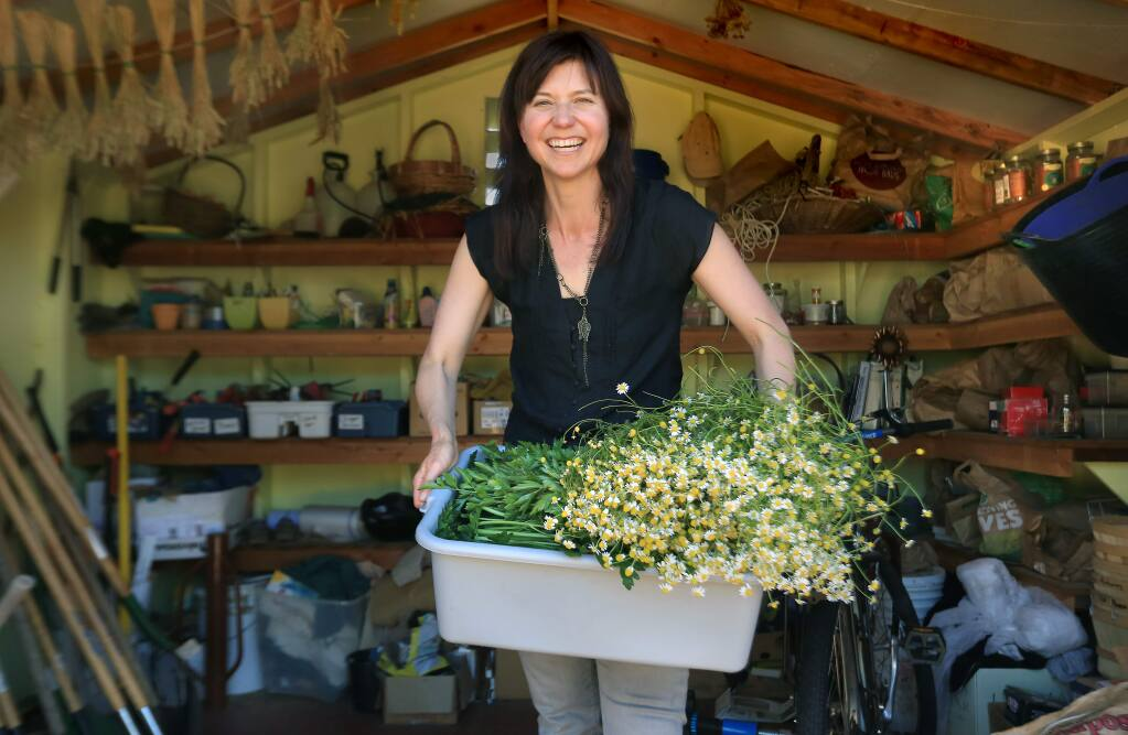 Photographed at Ceres Community Garden in Sebastopol, Naomi Starkman, editor-in-chief of Civil Eats was named a John S. Knight Fellow, Monday June 8, 20, 2015. Writing a blog, Starkman encourages people to think about sustainable agriculture and food systems. (Kent Porter / Press Democrat) 2015
