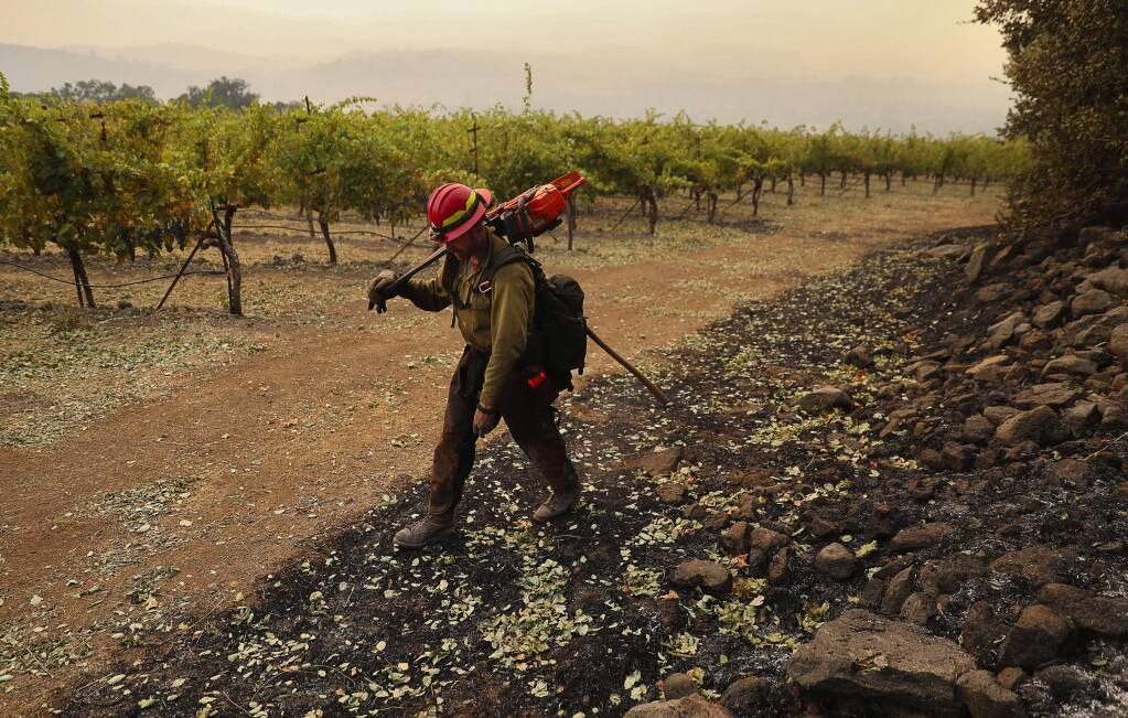 PatRick Corp. firefighter Josh Korczak checks for any signs of heat from a burned area next to a block of cabernet vines at Kunde Family Winery, in Kenwood on Monday, October 16, 2017. (Christopher Chung/ The Press Democrat)