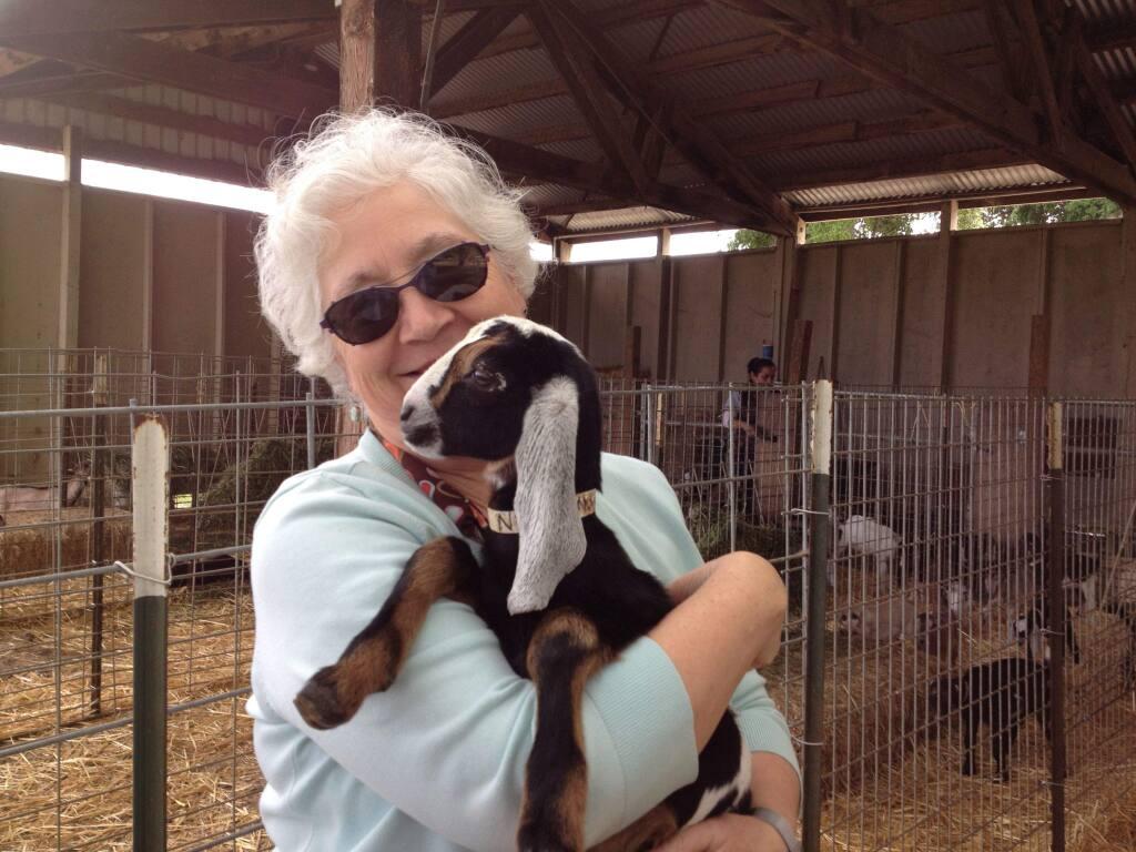 Jennifer Bice, owner of Redwood Hill Farm holds a baby Nubian goat.