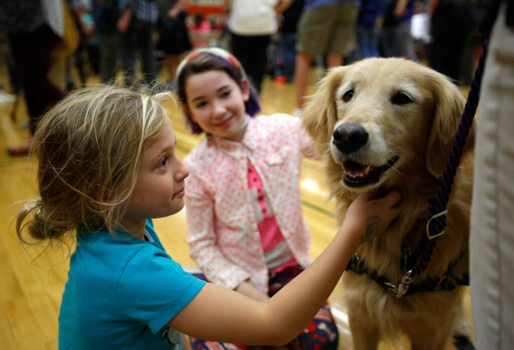 Vivien Nielson, 7, left, whose family's home in the Wikiup neighborhood was destroyed by the Tubbs fire, and Annie Ethington, 11, of Santa Rosa take time to pet Alexis the comfort dog during a town hall meeting in the aftermath of the Sonoma County wildfires, at Santa Rosa High School in Santa Rosa, California, on Saturday, October 14, 2017. (Alvin Jornada / The Press Democrat)