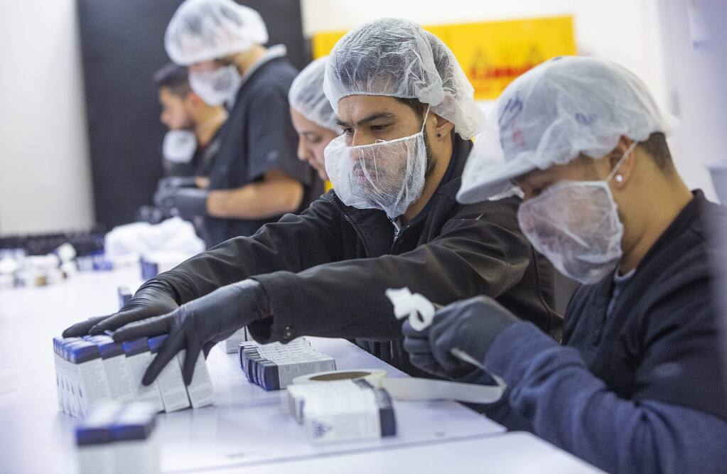 In this file photo, workers package AbsoluteXtracts Sleepytime Sublingual Drops at CannaCraft in Santa Rosa. (John Burgess / The Press Democrat)