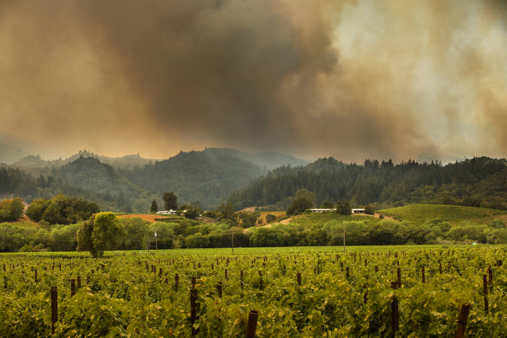 The Walbridge fire burns above the Dry Creek Valley in Healdsburg on Friday afternoon, August 21, 2020.  (John Burgess/The Press Democrat)