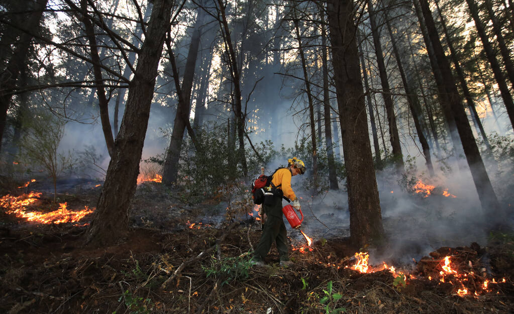 Prescribed fire is used to thin the forest floor in the hills above West Dry Creek Nov. 29, 2020. The Walbridge fire burned very close to the area of the prescribed fire.  (Kent Porter / The Press Democrat)