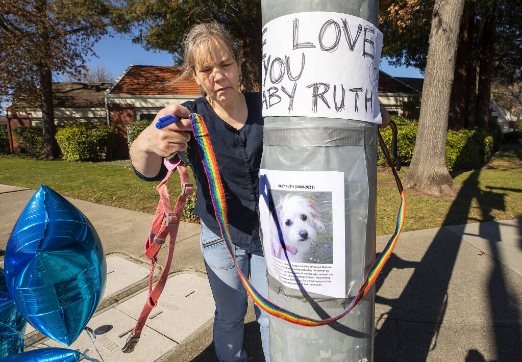 Susan Standen wraps her dog's leash around a memorial to her dog, Baby Ruth, which was attacked and killed last Saturday by a large dog that jumped from a vehicle at the corner of Summerfield Road and Hoen Avenue in Santa Rosa. The offending dog's owner drove away. Standen said Animal Control officers, after tracking him down, said they could do nothing if he didn't admit it was his dog. (John Burgess / The Press Democrat)