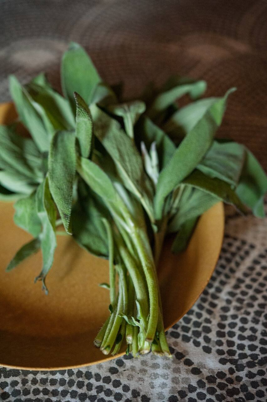 Sage is an herb that is associated with fall and Thanksgiving. (Gina Jones)