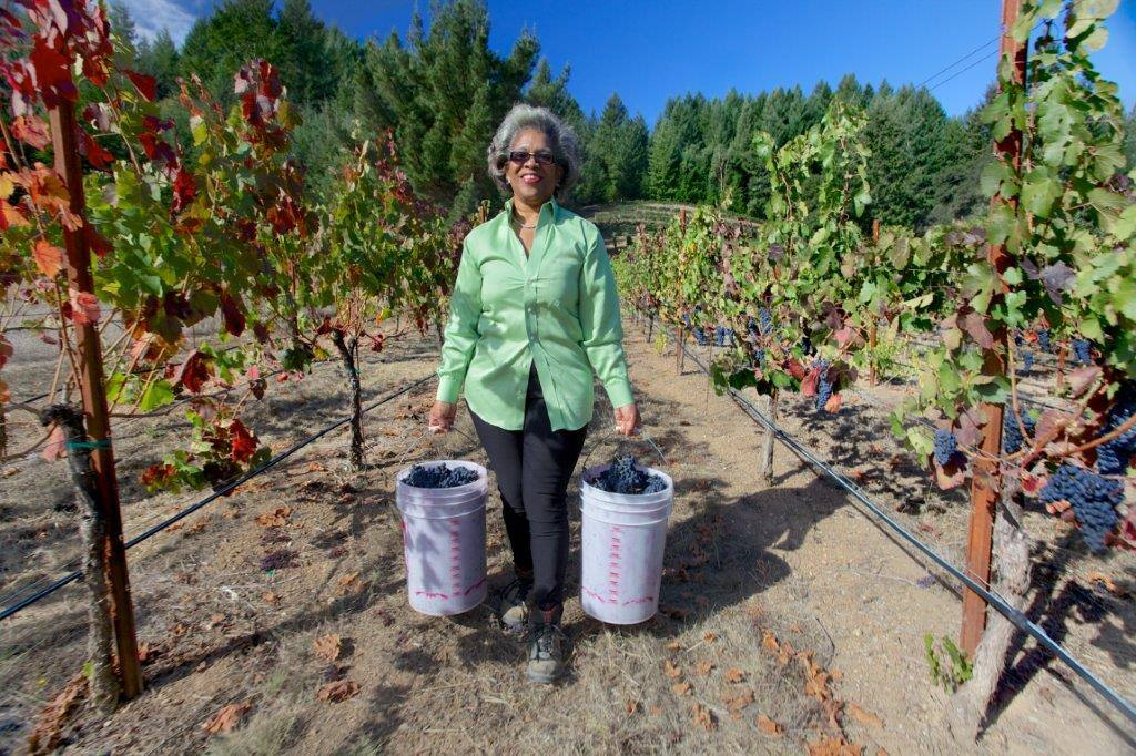Trial attorney Theodora Lee owns Theopolis winery in Mendocino County.
