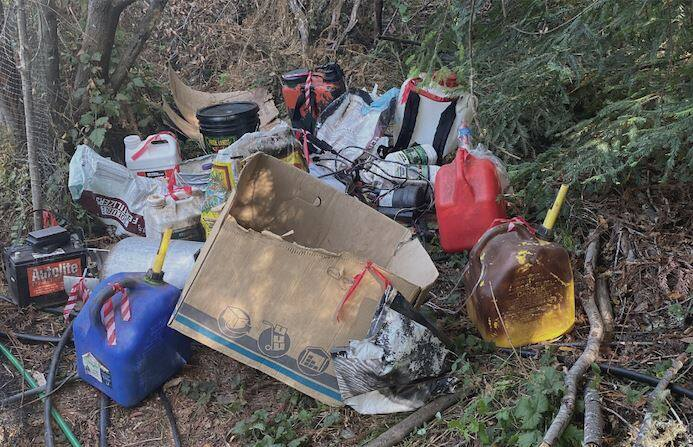 About 1,500 marijuana plants discovered on property within the Sonoma Coast State Park on Aug. 17, 2021. Officials also about 1,000 pounds of trash at the site. (California Department of Parks and Recreation)