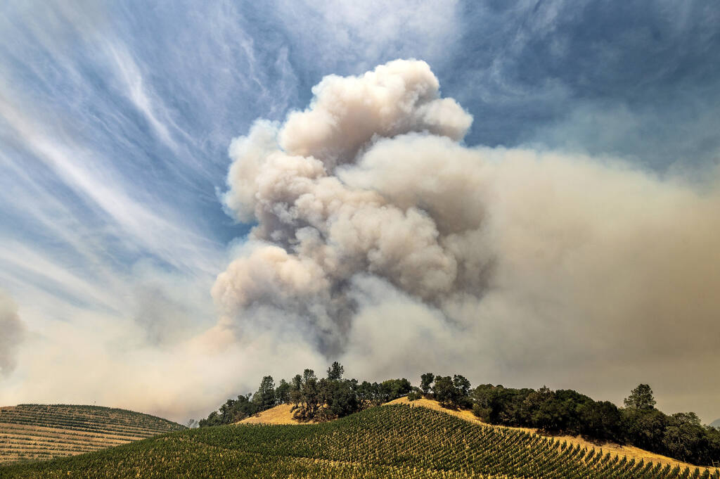 A plume rises over a vineyard in unincorporated Napa County as the Hennessey Fire burns on Aug. 18.  (AP Photo/Noah Berger)
